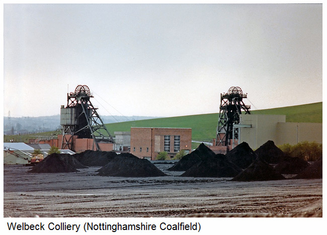 Welbeck colliery woods